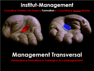 management-transversal